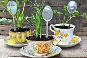 tea cup recycling idea