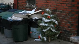 xmas waste collection