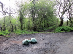 Fly-tippers could be given on the spot fines in Wales
