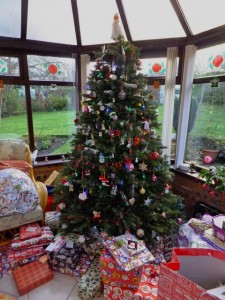 A 'green Christmas' is what the people of North Devon want this year - so don't forget to recycle